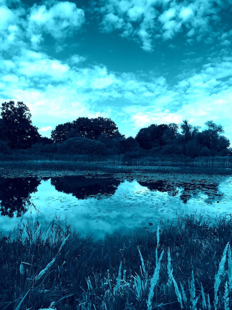 Blauer See bei Potsdam (Bild: Marc Mühleis)